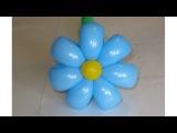 Ромашка 7 лепестков из шаров simple 7 petals flower balloon (Subtitles)