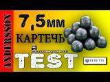 #Relo@ding# Кaртечь #7.5 на кабана!Реально?♦ Shʘʘting test♦