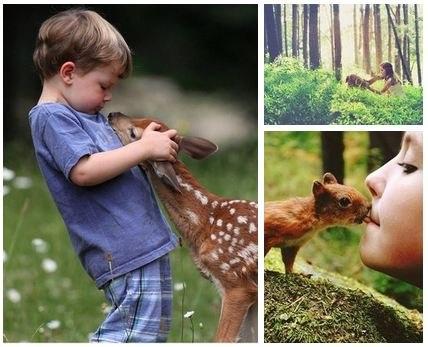 Что говорят дети о природе