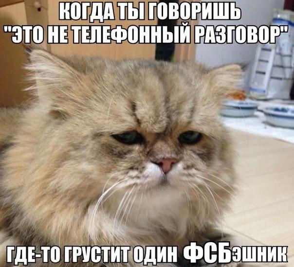 """Путин призвал контрразведку предельно мобилизоваться: """"Активность зарубежных спецслужб, работающих по России, растет!"""" - Цензор.НЕТ 1835"""