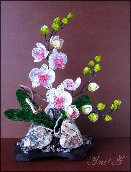 Загадочна, вечно желанна,красива и так многогранна. - бисерные композиции - Бисерные деревья,композиции,цветы...