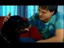 Юрий Шатунов Не бойся Official Video