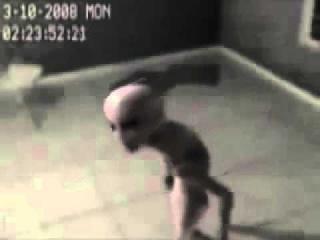 Инопланетянин в плену у военных США