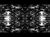 VILDHJARTA - Dimman