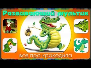 Мультики про животных. Развивающий мультфильм про КРОКОДИЛ.