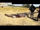 Боевики ИГ выложили ужасающее видео казни 1500 человек