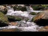 Музыка для сна - Гипноз от стресса