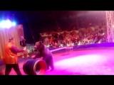 цирк Шапито 6