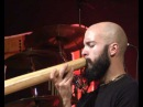 Dubravko Lapaine Lake of Awareness DidjinOz 2008 - didgeridoo festival Forlimpopoli 9/9
