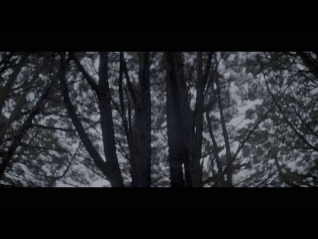 Karnivool We Are - Official Video