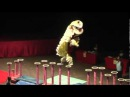 2012 World HK Dragon Dance & Lion Dance Championship