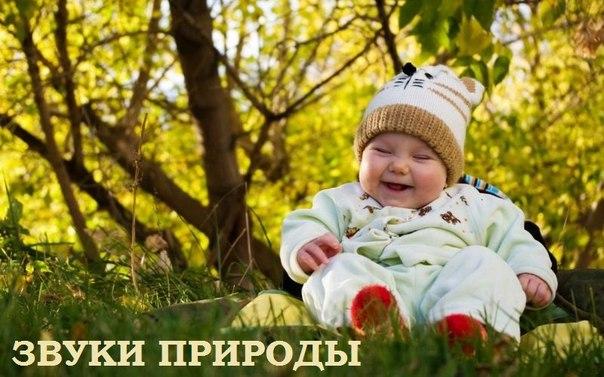 русская народная сказка где музыка играет главную роль