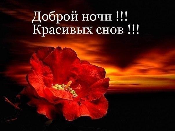 http://cs624931.vk.me/v624931420/18ae2/7ftaGro6bxA.jpg