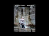 «Со стены друга» под музыку питбул - 2011. Picrolla