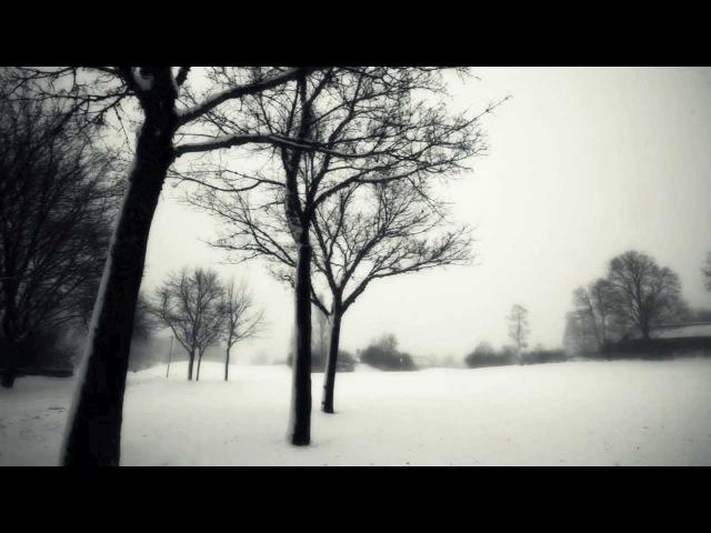 David Darling Eve Kodiak - Reminiscence