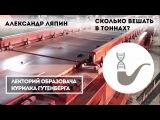 Как взвесить поезд Александр Ляпин