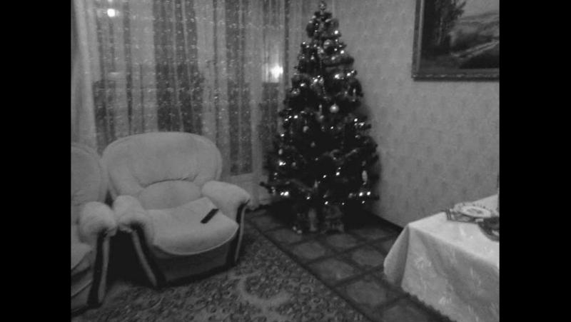 Новый год в моей семье 2012