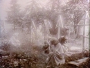 Dokumentti valokuvaaja I. K. Inhan elämästä Julkaistu 10.3.1981