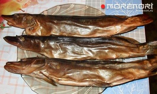 Собственный рецепт копчёной рыбы