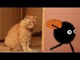 Spider vs Cat - Паук Амик против кота. Mult-uroki.ru. 2d animation in Anime Studio Pro (Moho Pro)