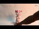 Говорящая кошка Анжела - подруга кота Тома