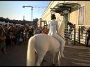 L'Anno Del Coniglio Bianco By Franco Losvizzero 2011 Performance Macro Museum