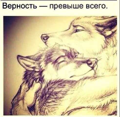 Никита Воевода | Барнаул