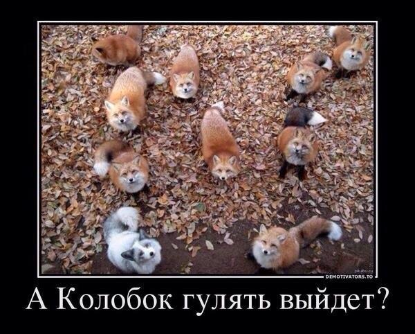 akhK-O8rvxE.jpg