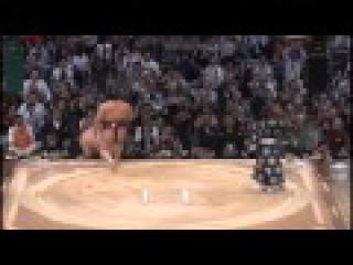 【稀な勢い】2013年大相撲九州場所ED(職人さん制作)【欧州の終わり、太&