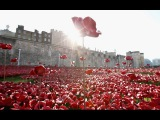 Riding the wave: drone-view of Tower of London poppy field
