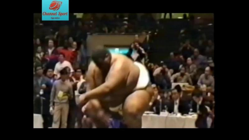 Самый толстый боец ММА- Эммануэль Ярборо- Лучшее
