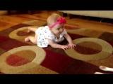 Собака по кличке Бадди Buddy учит маленькую девочку ползать по полу