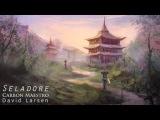 Carbon Maestro &amp David Gruwier - Seladore (SOK4)