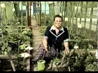Выращивание перца в условиях холодного климата