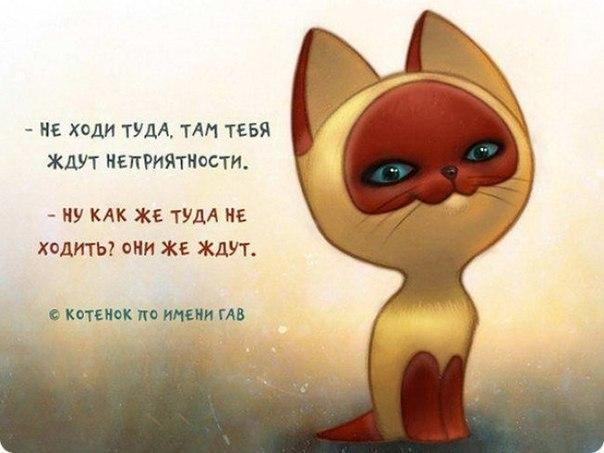 Фото №354203975 со страницы Николая Аржакина