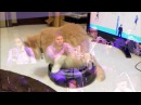 Cats on roombas jazz metal [exigence mvmt 3 live @ roulette by MxE]