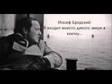Иосиф Бродский - Я входил вместо дикого зверя в клетку...