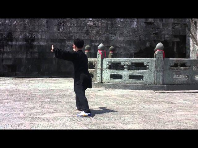 Ван Лин. Тайцзицуань 42 формы Ян (вид сбоку).mp4