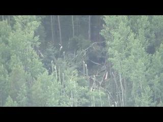 США. Black Hawk разбился в Колорадо (02.09.2015 г.)