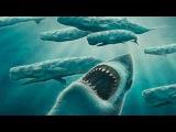 Самая большая акула Megalodon, которая жила на нашей планете