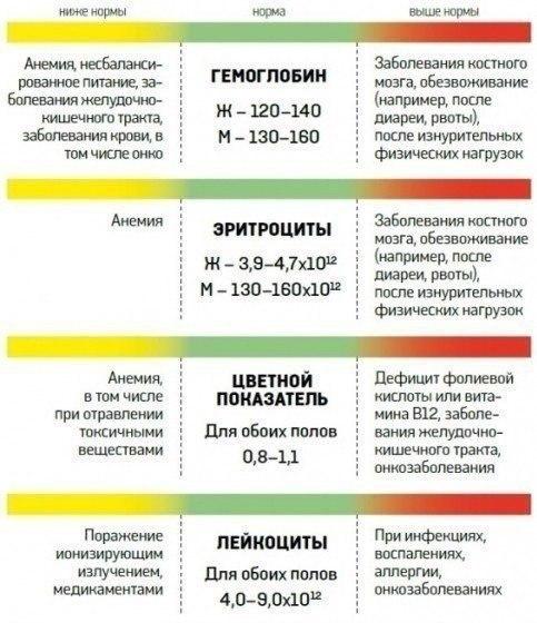 О каких заболеваниях расскажет общий анализ крови медицинская справка 001-гс/у новосибирск