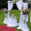 Ovatio!Wedding  Весільна агенція