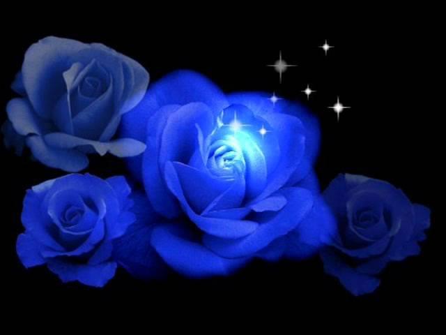 Frequenz - Синие розы (ты смеялась надо мной)