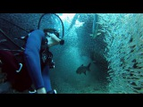 GoPro Enchanting Scuba Dive with 1 Million Fish