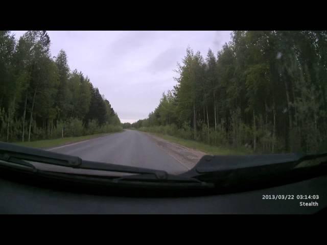 Suzuki GSX R1000 столкновение на 200 км ч с собакой Мотоавария Moto accident