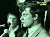 265. THEM (Featuring VAN MORRISON) - LIVE 1965 -
