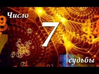 Число Судьбы 7. Астротиполог - Нумеролог - Дмитрий Шимко