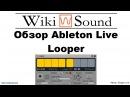 Обзор Ableton Live Looper