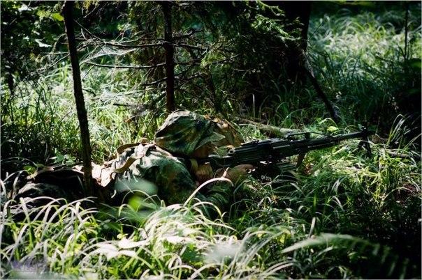 но для боя в лесу