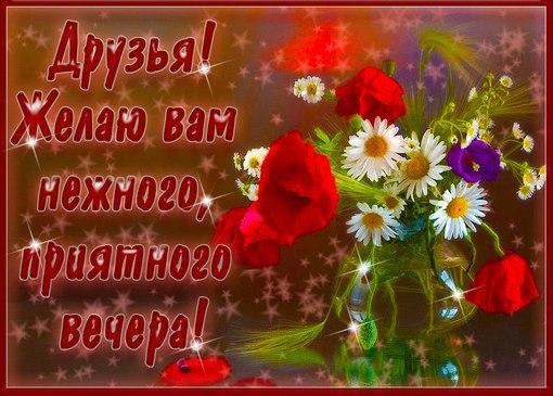 http://cs625122.vk.me/v625122616/40c23/gGIHfE04-JQ.jpg